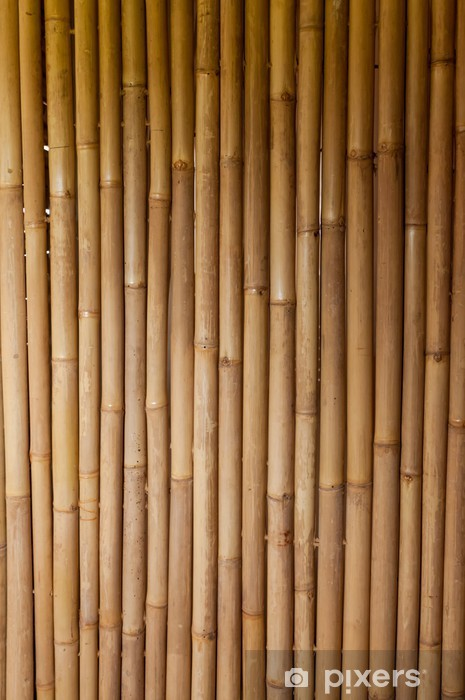 bamboo Washable Wall Mural -
