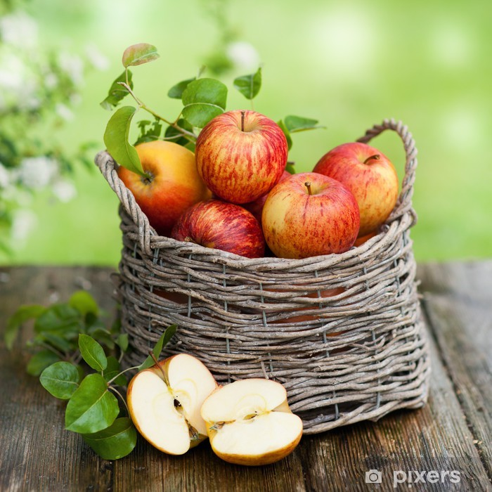 Erntezeit Pixerstick Sticker - Apple trees