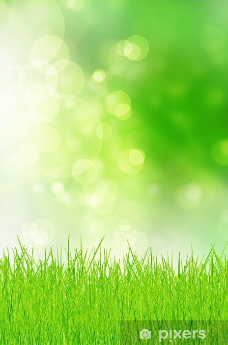 Naklejka Pixerstick Wiosną tła - Tła