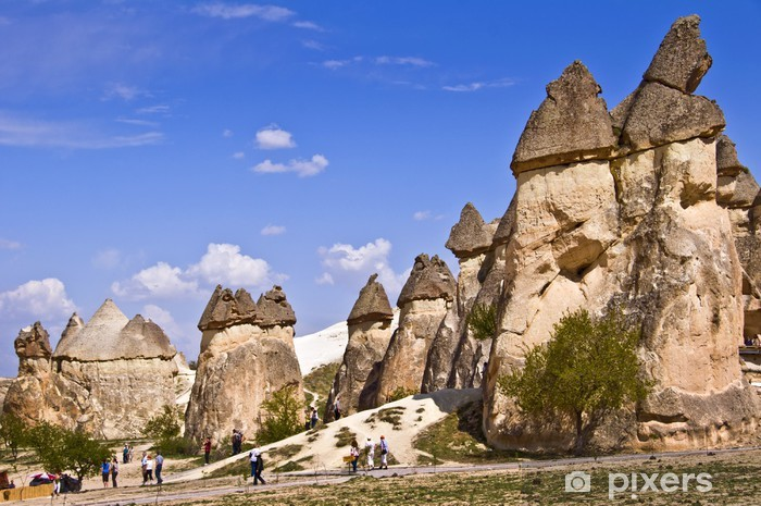 Cheminees De Fees A Pasabag Cappadoce Turquie Wall Mural