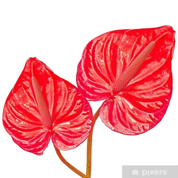 Papier peint vinyle Deux feuilles rouges - Plantes