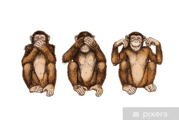 3 Affen Bedeutung
