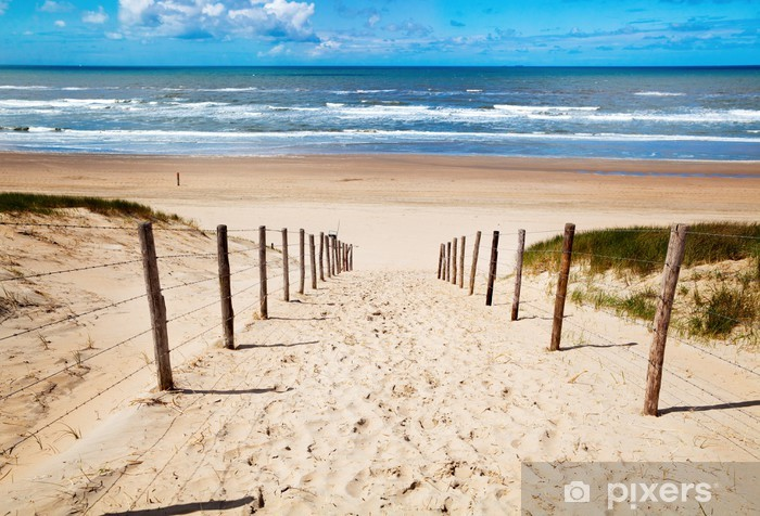 Papier peint vinyle Chemin de la plage - Thèmes