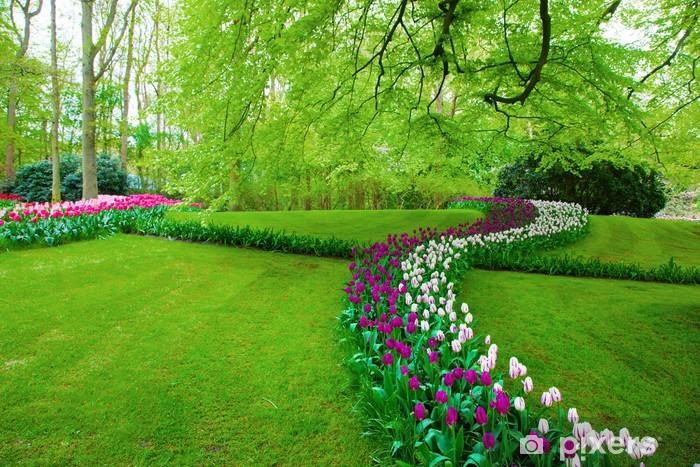 Park Als Tuin : Fotobehang kleurrijke tulp bloemen in de lente park tuin u2022 pixers