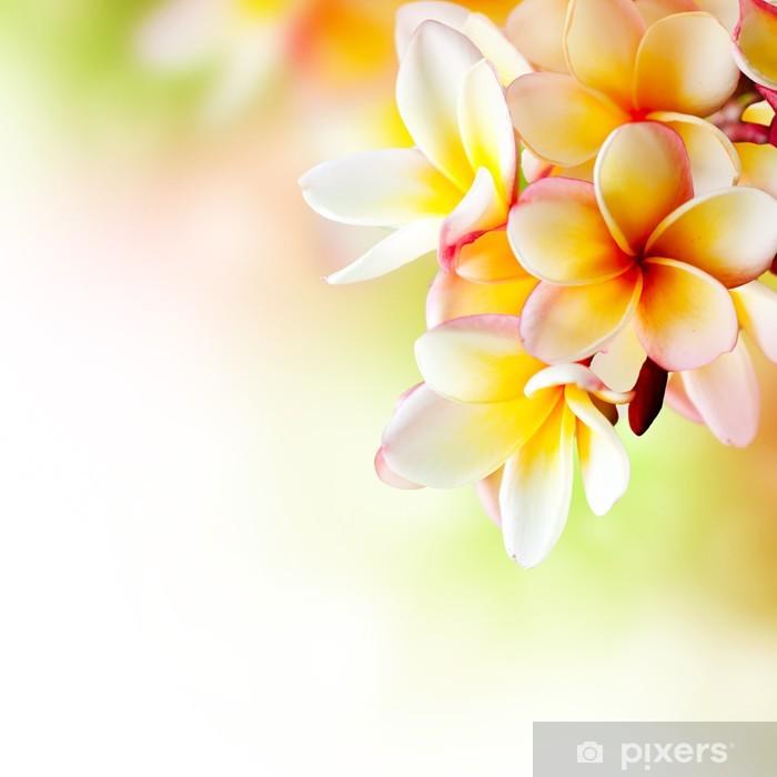 Sticker Pixerstick Frangipani Flower Spa Tropical. Plumeria. Border Design - Thèmes
