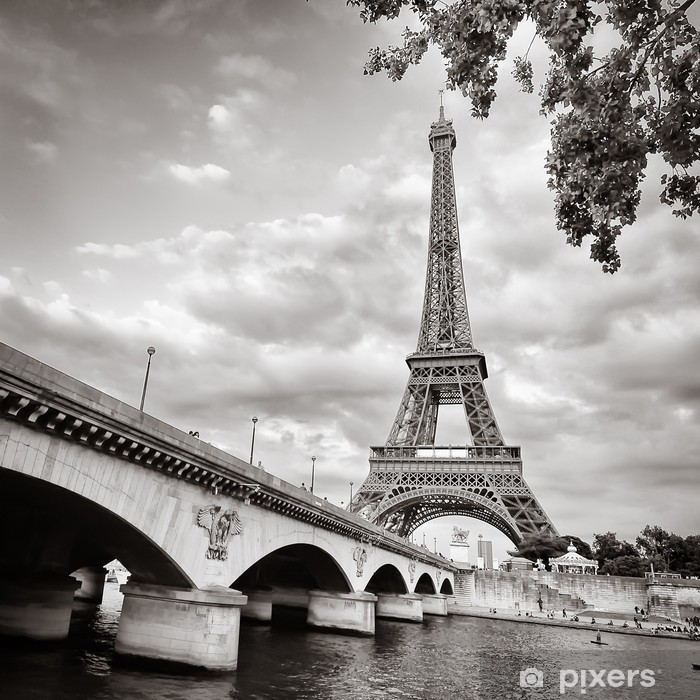 Eiffel tower view from Seine river square format Vinyl Wall Mural - Themes