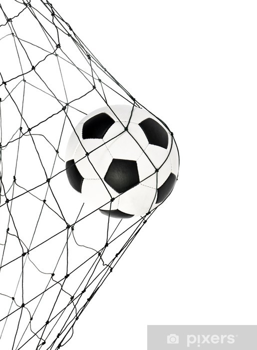 soccer ball in the net gate Vinyl Wall Mural - Wall decals