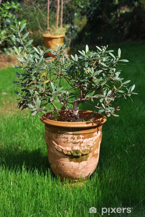 Naklejka Pixerstick Anduze wazon 1 - Drzewa