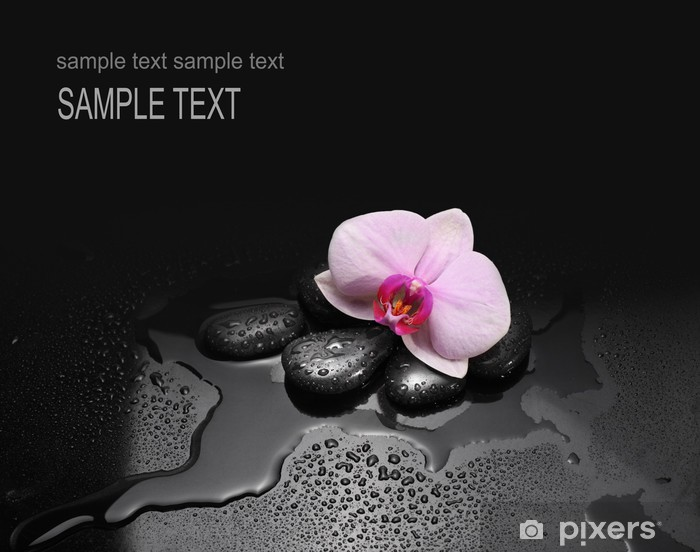 Sticker Pixerstick Pierres noires et orchidées avec des gouttes d'eau - Fleurs