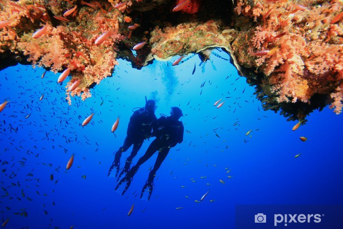 Scuba Divers explore a coral reef Pixerstick Sticker - Water Sports