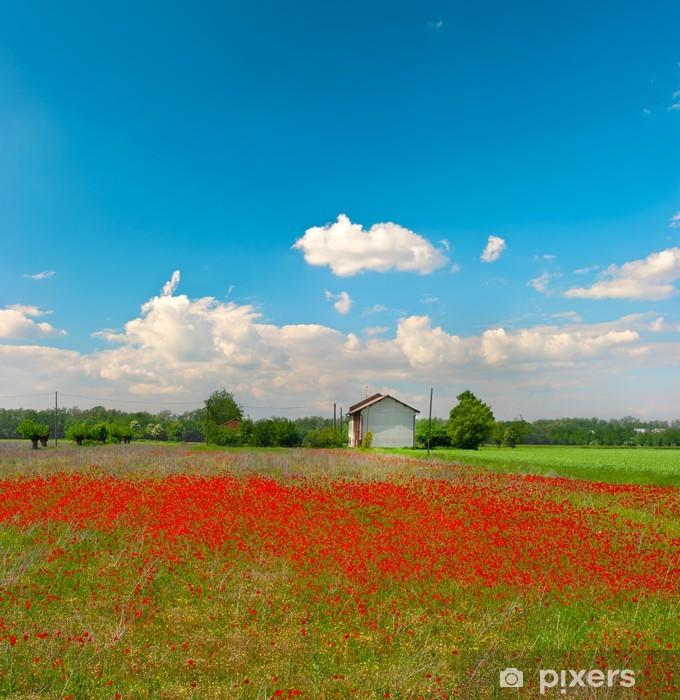 Fotomural Estándar Amapolas de campo y el cielo azul nublado - Estaciones