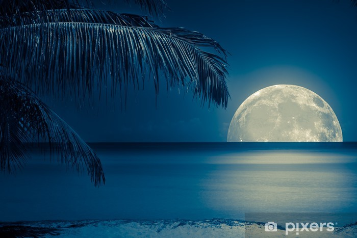 Moon reflected on the water of a tropical beach Vinyl Wall Mural - iStaging