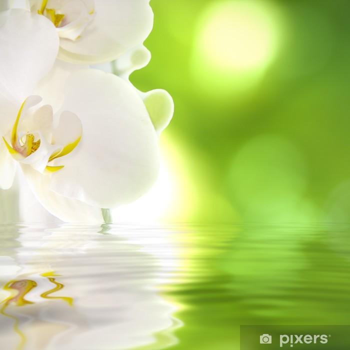 Fototapeta winylowa Storczyk na wodzie - Tematy
