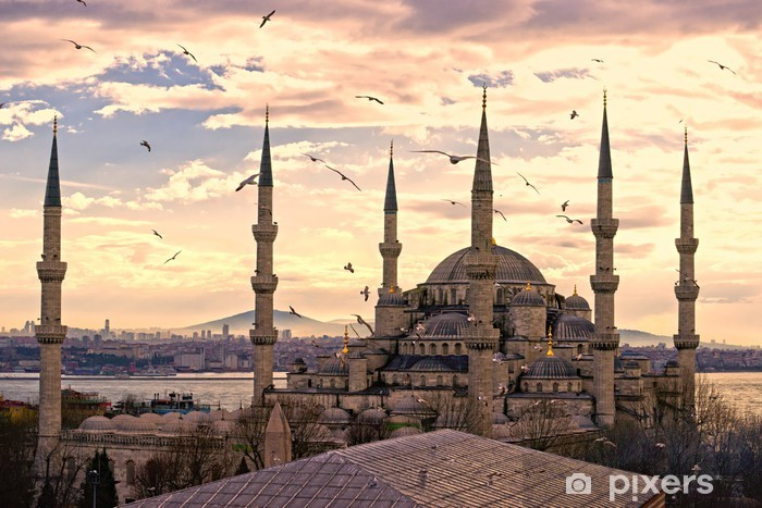 The Blue Mosque, Istanbul, Turkey. Vinyl Wall Mural - iStaging