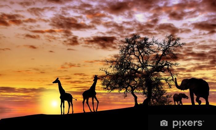 African sunset Vinyl Wall Mural - Themes