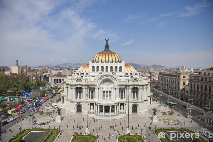 Bellas Artes Mexico Df Wall Mural Pixers We Live To Change