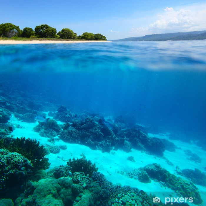 Naklejka Pixerstick Bali Barat National Park - Azja