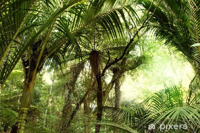 Vinil Duvar Resmi Tropikal orman -