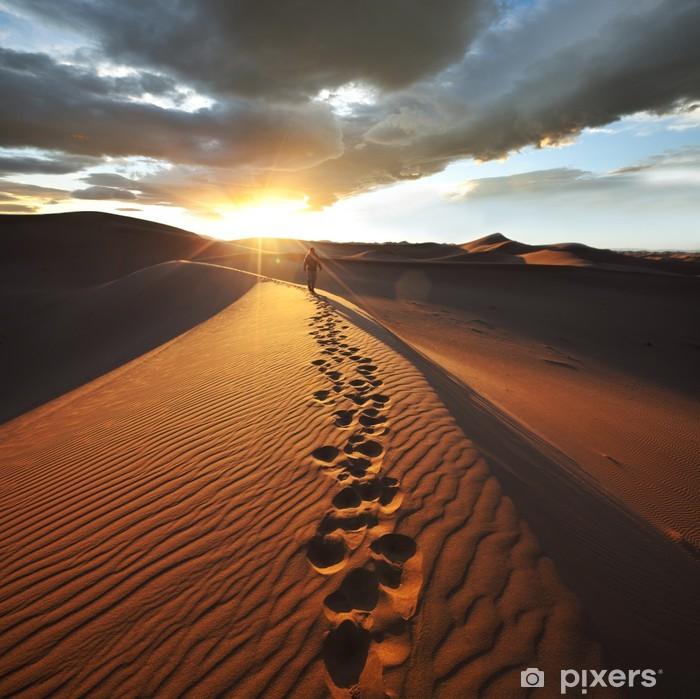 Fototapeta winylowa Trasa na pustyni - Pustynia