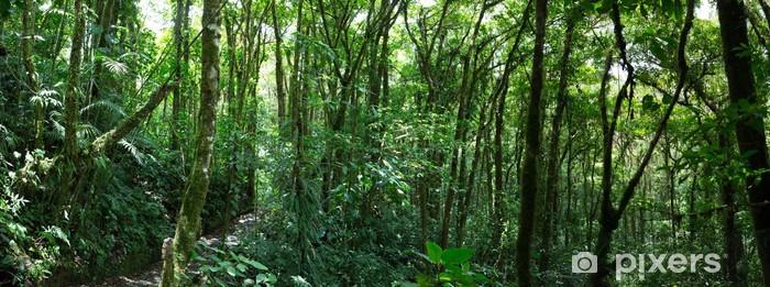 Cloud skov i Costa Rica Vinyl fototapet - Skove