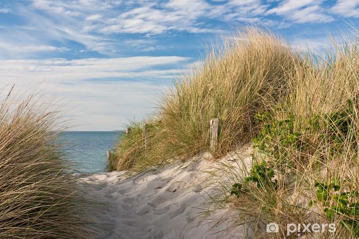 Pixerstick Sticker Pad naar het strand door de duinen met helmgras op de Oostzee - iStaging