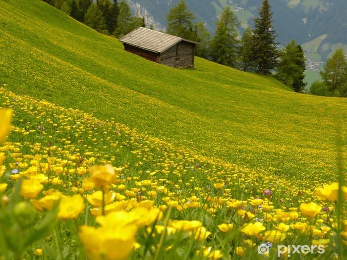 Fiori Gialli In Montagna.Carta Da Parati Giallo Verde Fiore Prato Di Montagna Con House In