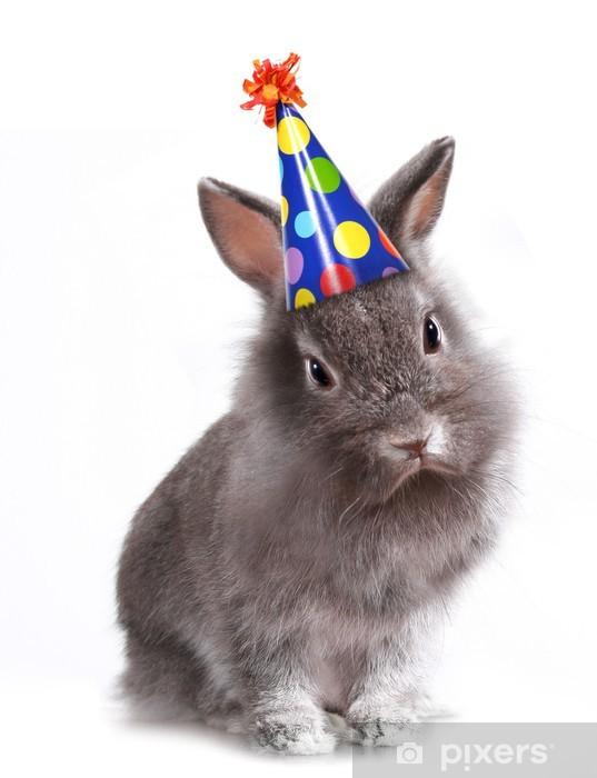 Sticker Pixerstick Angry Grey Rabbit Furry Avec un chapeau d'anniversaire sur - Lapins