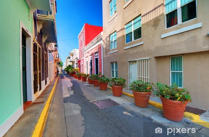 San Juan, Puerto Rico Old City Alleyway Vinyl Wall Mural - Themes