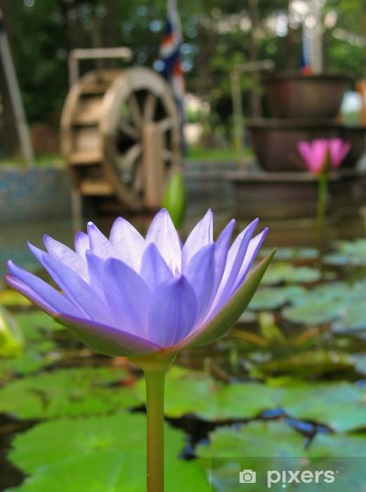 Papier peint Fleur de Lotus bleu