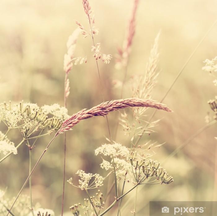 Papier peint vinyle Summer meadow - Styles