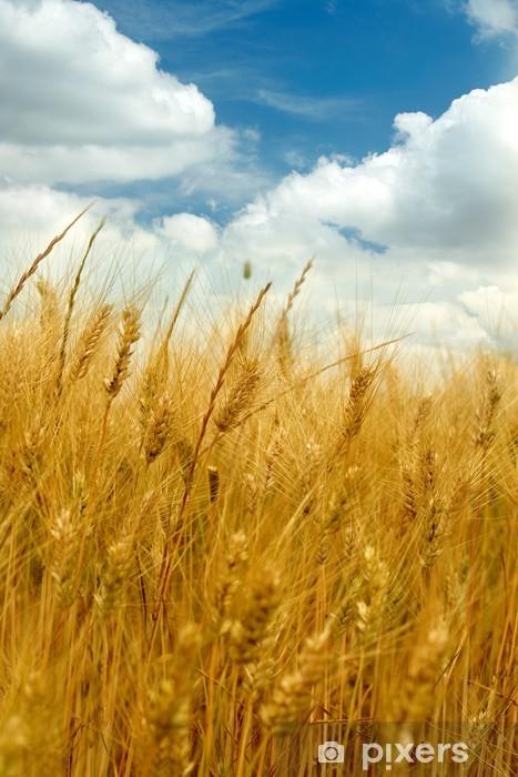 Nálepka Pixerstick Zlaté pšeničné pole - Hory