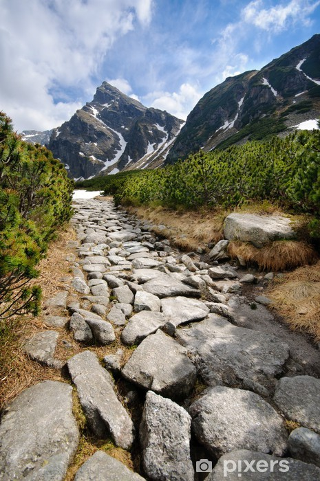 Pixerstick Aufkleber Polnischen Tatra - Themen