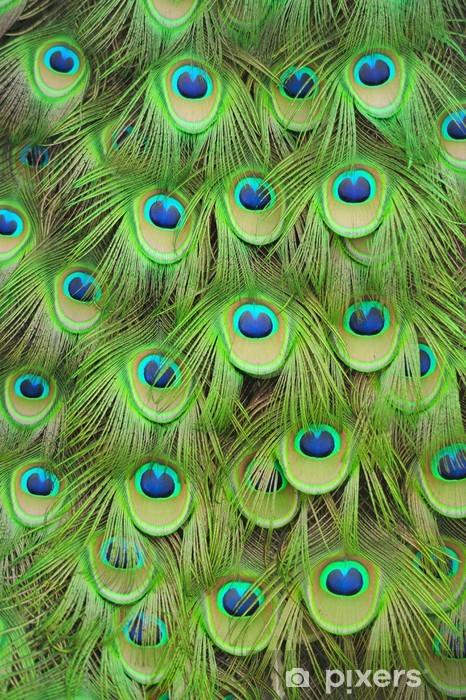 Naklejka Pixerstick Pawie pióra - Tekstury
