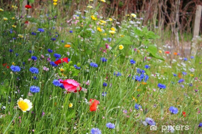 Naklejka Naturalny Ogrod Kwiaty Pixers Zyjemy By Zmieniac