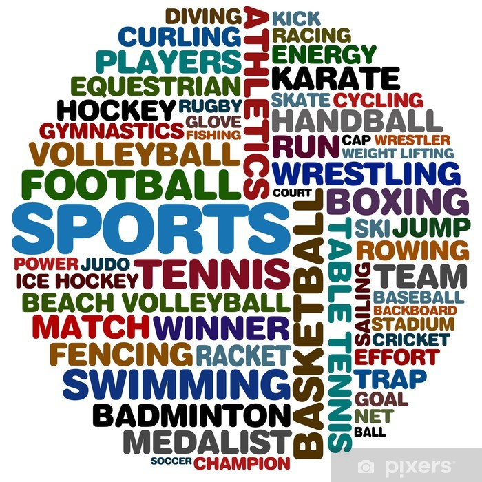 Kjøleskapsklistremerke Sportskollasje - Lagidrett