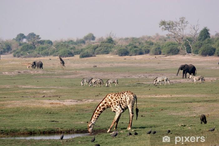 Sticker Pixerstick Chobe Riverfront paysage - Afrique