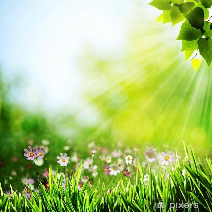 Papier peint vinyle Milieux naturels abstrait avec des fleurs de beauté - Saisons