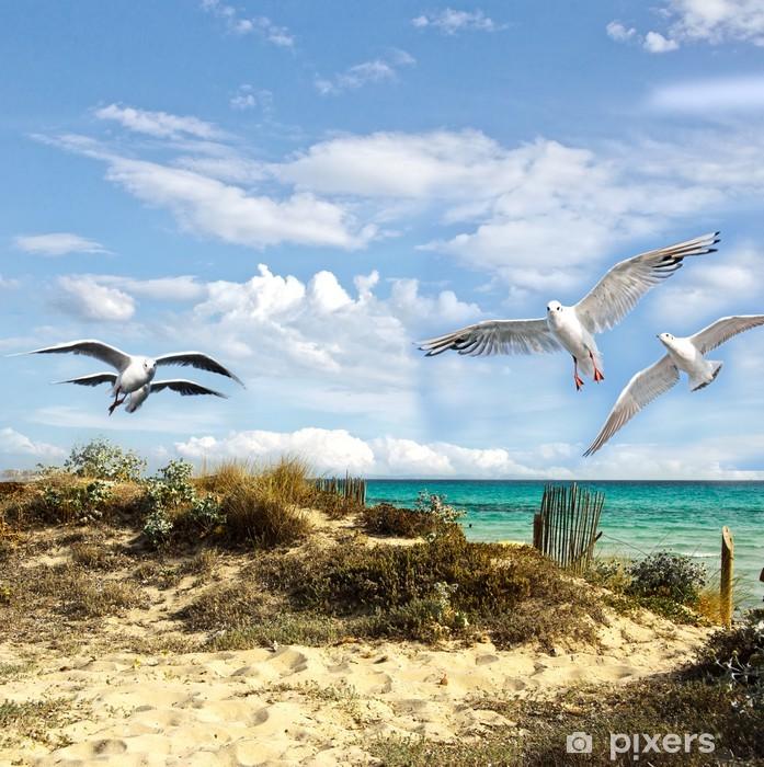 Fototapeta winylowa Letnie wakacje: plaża, morze i mewy - Tematy