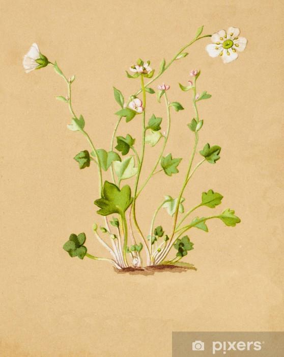 Sticker Pixerstick Illustration en couleurs de fleurs en aquarelle - Fleurs