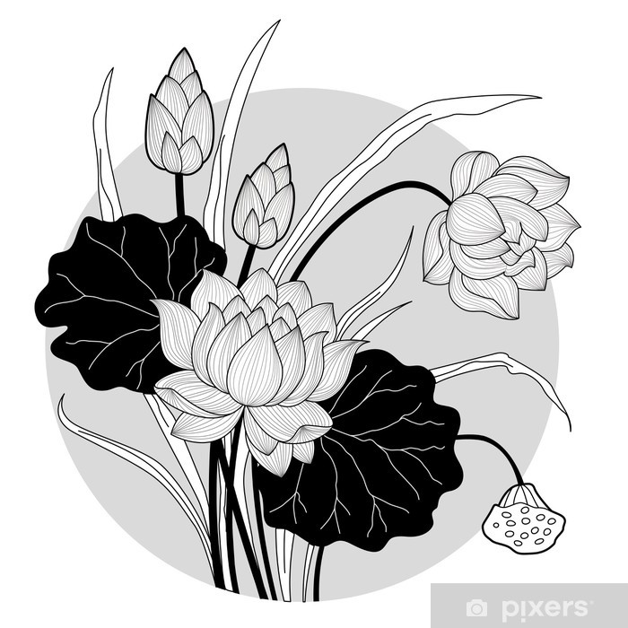Fototapeta Winylowa Dekoracyjny Tatuaż Kwiat Lotosu Z Okręgiem Tle