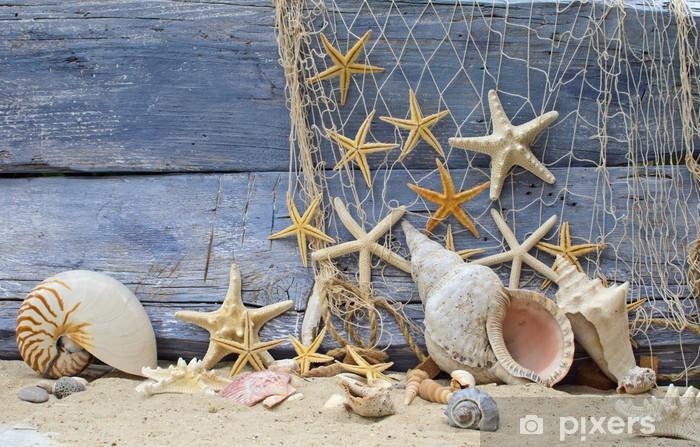 Afwasbaar Fotobehang Vakantie herinnering: Nautilus hoorn slak en zeesterren -