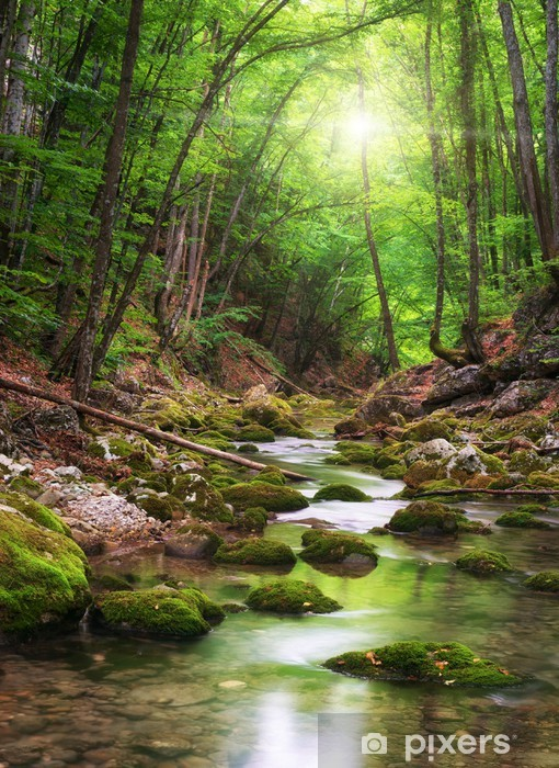 River deep in mountain forest Pixerstick Sticker - Themes