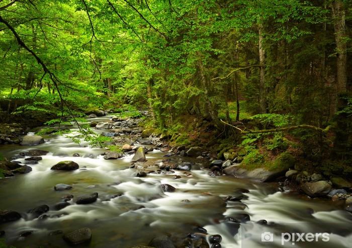 Naklejka Pixerstick Górskiej rzeki w lesie - Tematy