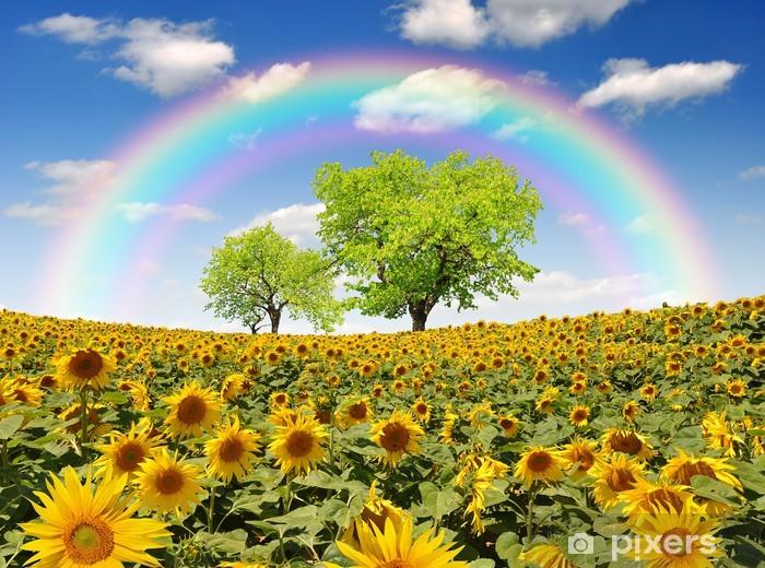 Autocolante Pixerstick rainbow above the sunflower field with tree - Temas