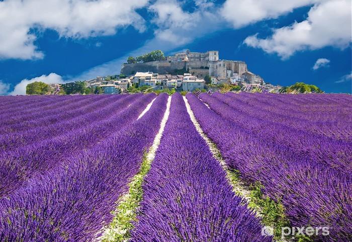 Fototapeta winylowa Lavande en Provence, wieś provençal en France - Tematy