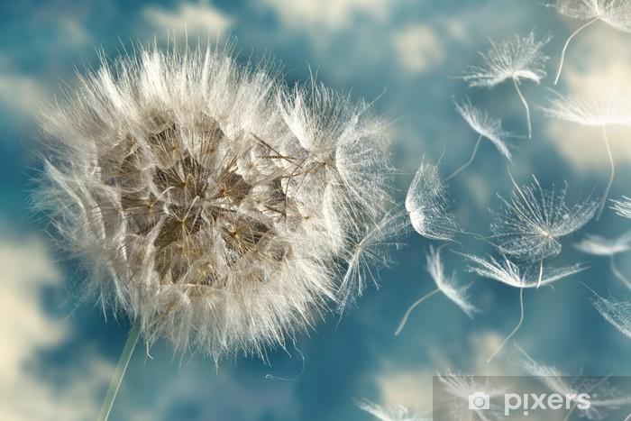 Dandelion Loosing Seeds in the Wind Pixerstick Sticker - Themes