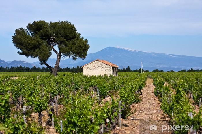 Sticker Pixerstick Vignobles de Provence - Europe