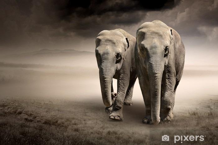 Sticker pour table et bureau Paire d'éléphants en mouvement - Animaux