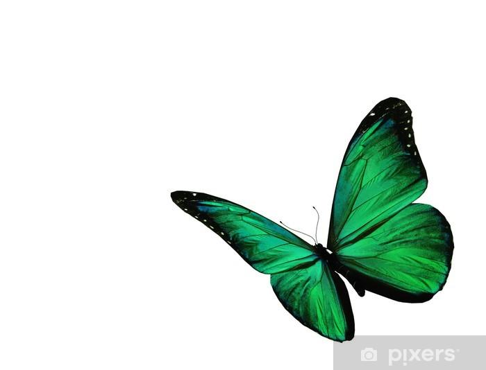 Vinylová fototapeta Zelený motýl létání, izolovaných na bílém pozadí - Vinylová fototapeta
