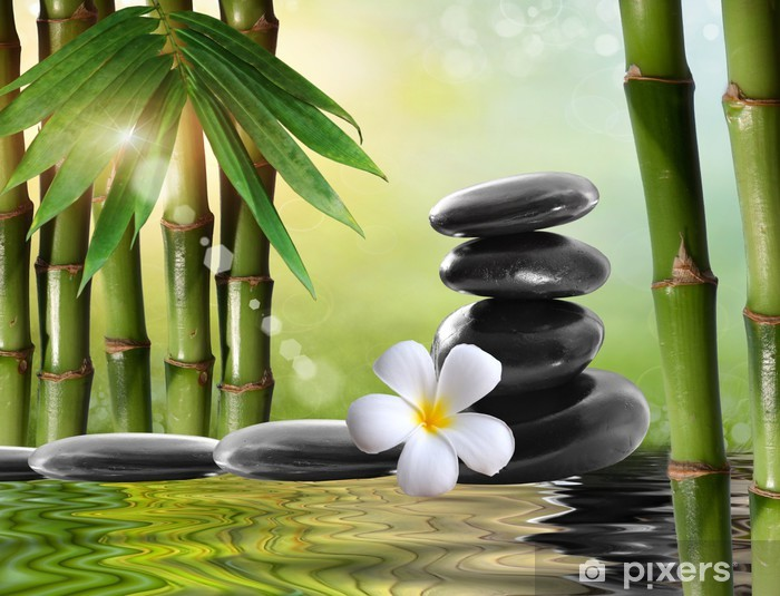 Spa flower peel and stick or classic glue photo mural wallpaper spa concept with zen basalt stones bamboo and Frangipani flower   W#116